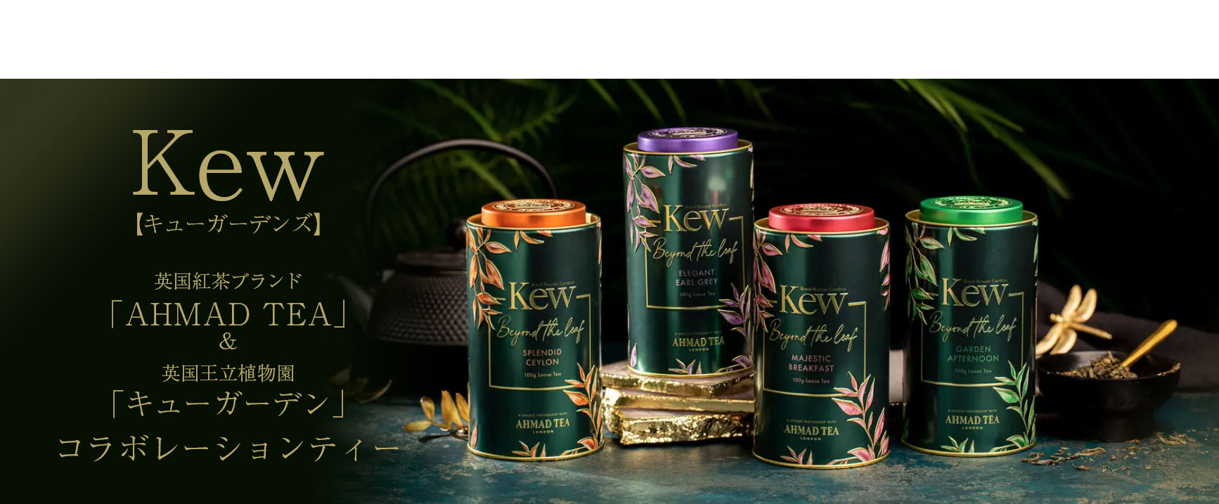 http://torrington.shop21.makeshop.jp/shopdetail/000000000270/